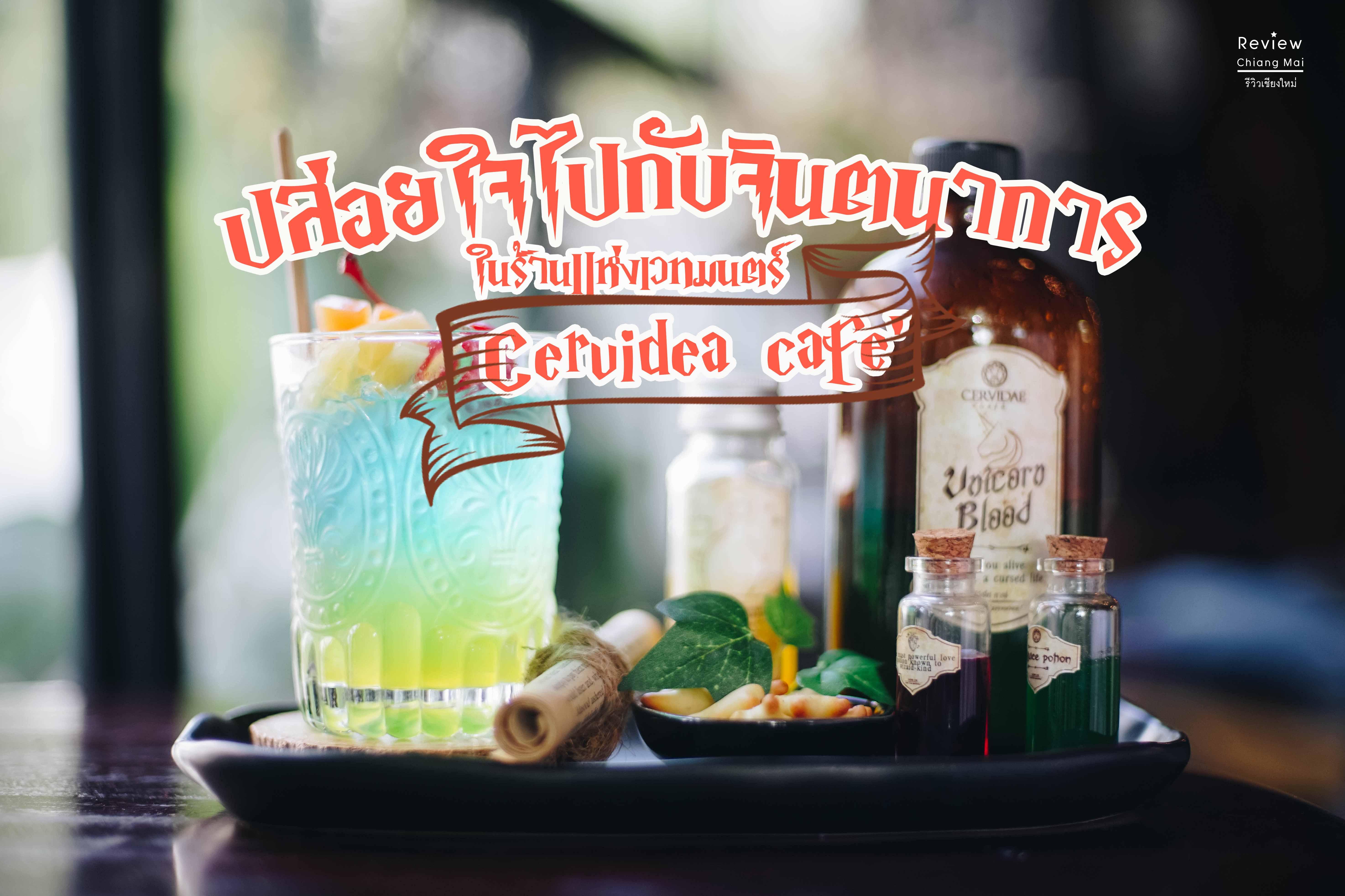 Cervidae cafe : ปล่อยใจไปกับจินตนาการ ในร้านแห่งเวทมนตร์