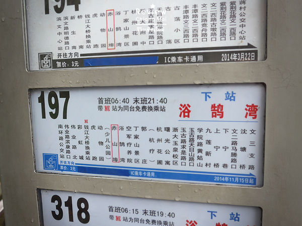 how to catch Chinese buses
