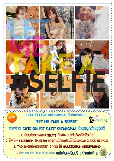 """LET ME TAKE A SELFIE"" กิจกรรมดีๆที่ Cats on ice Chiang Mai"